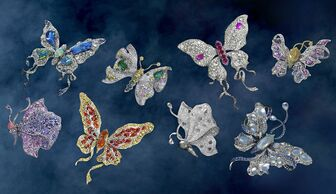 S1x1 butterfly collection courtesy annahu 2