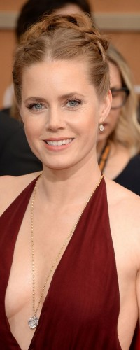Amy Adams pulls off sexy look wearing a low cut dress and big diamonds by Lorraine Schwartz