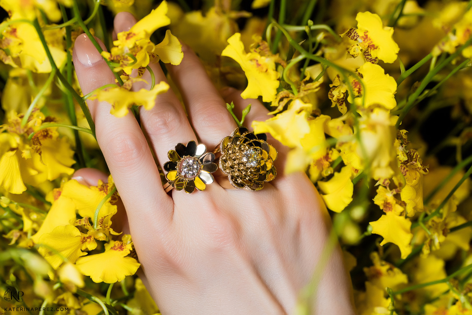 CADAR Bloom and Endless ring in yellow gold and diamonds. Photo by Simon Martner.