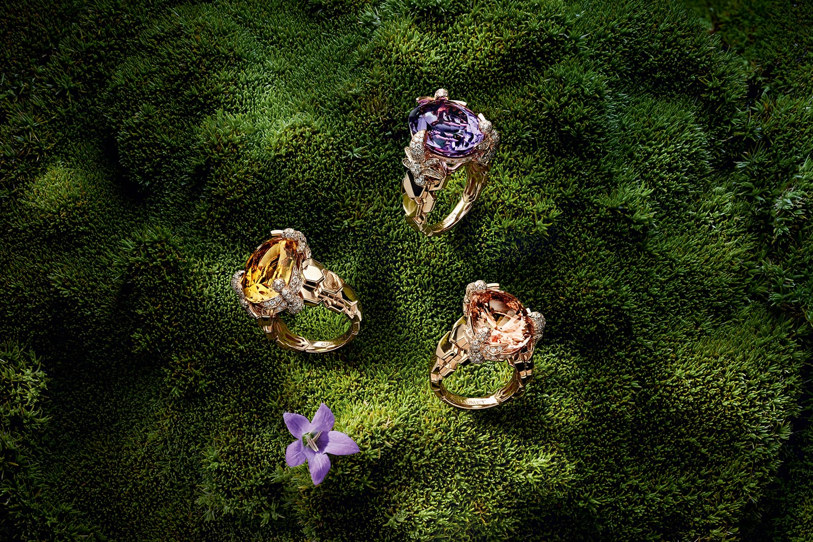 Chaumet 'Bee My Love' rings with yellow sapphire, morganite and amethyst all accented with diamonds in rose gold