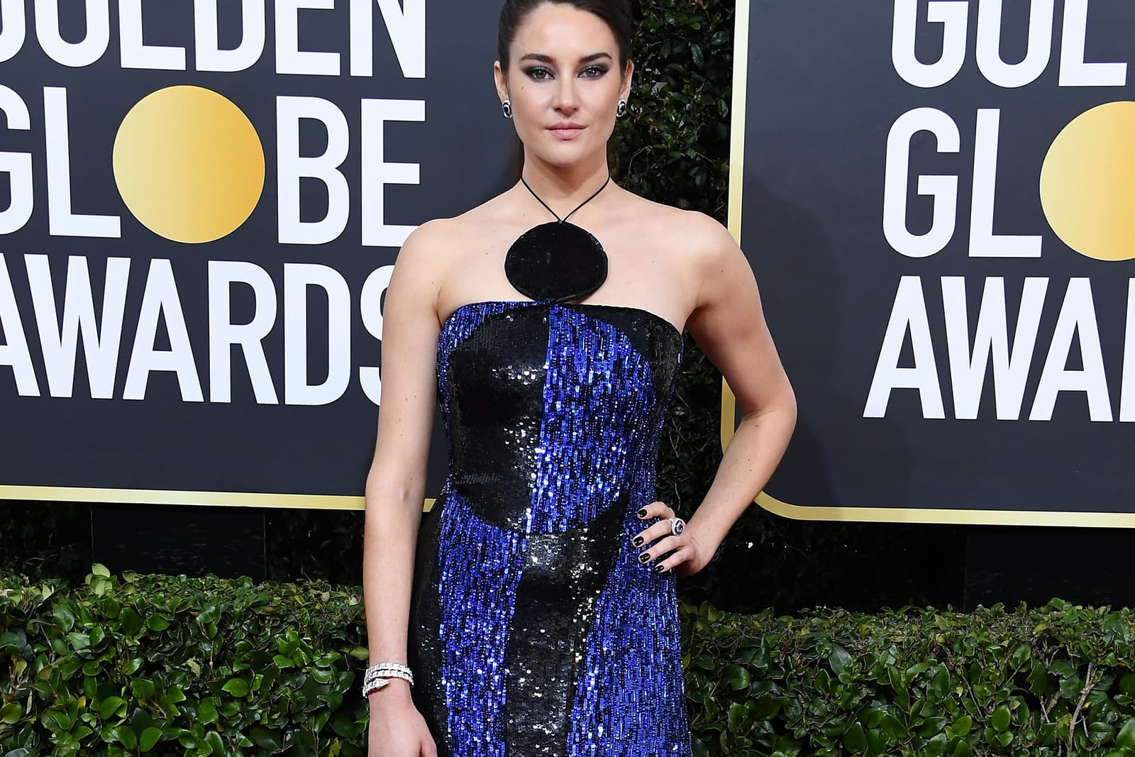 Golden Globes 2020 Red Carpet High Jewellery Review